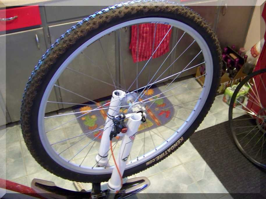 Mongoose wheel